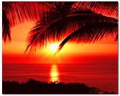 Paradise Hawaiian Entertainment Package